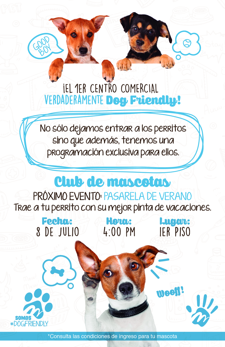 Volante dog friendly impresion 01